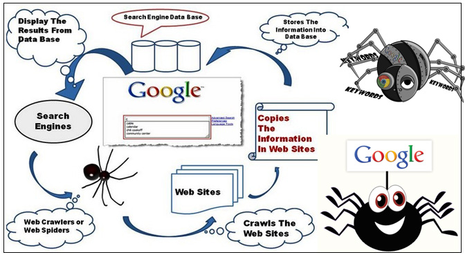 search-engine-spider-robotes-bots
